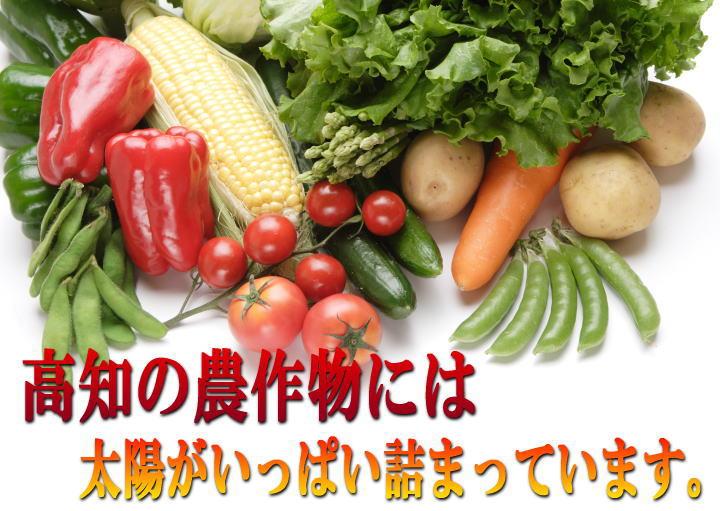 定期配布野菜画像