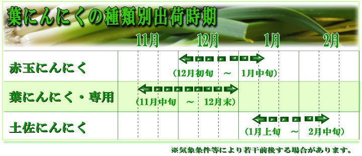 葉にんにく3種別出荷時期