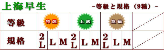 上海早生規格等級表